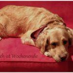 【国際恋愛】ドイツ人に使いたい!「良い週末を!」をドイツ語で♡【ドイツ語フレーズ♡】