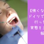 【怖くなかった】ドイツで歯医者に行ったので実態を主観的に報告 ~初診編~